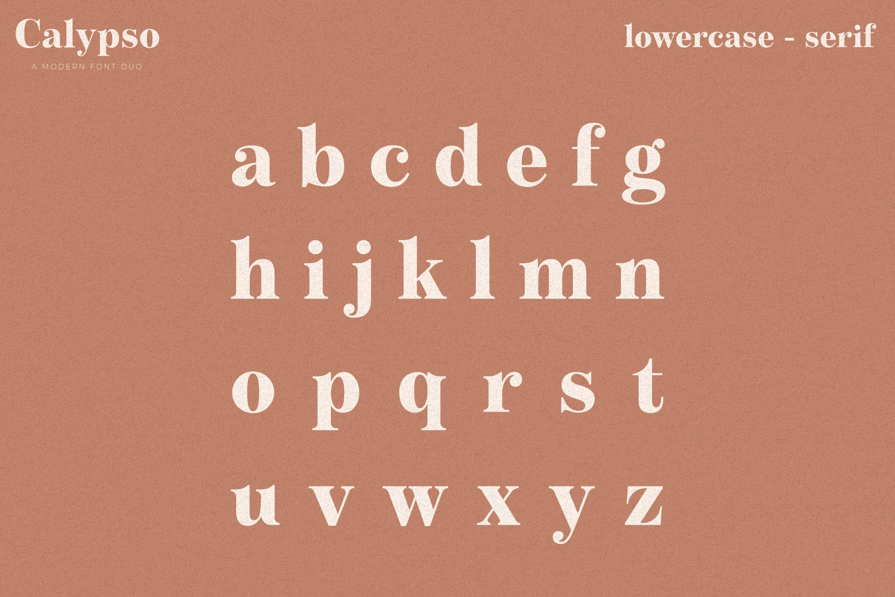 Calypso // A Modern Font Duo example image 13