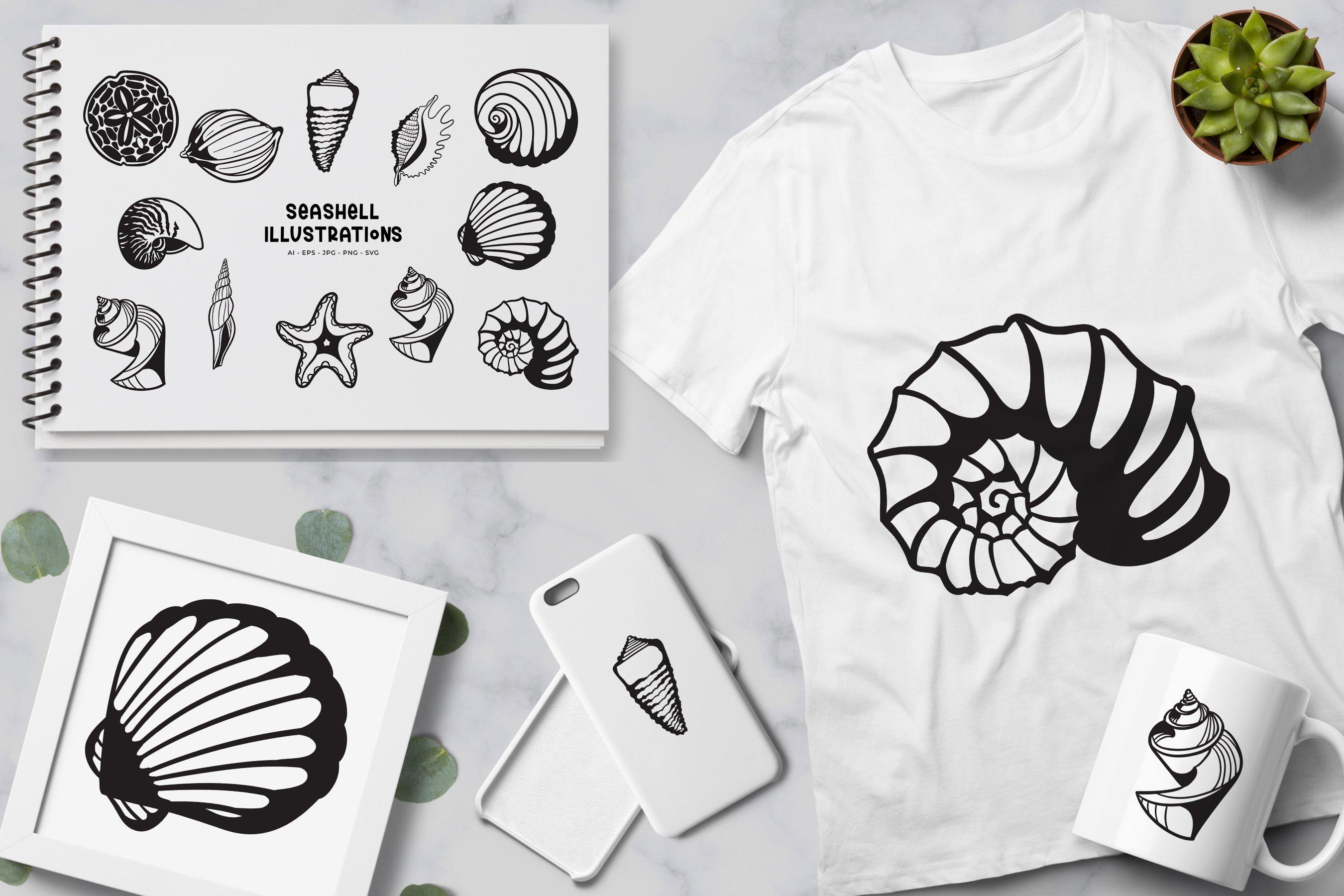 Seashell illustrations example image 2