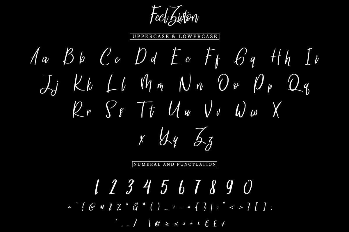 Feel zivton example image 5