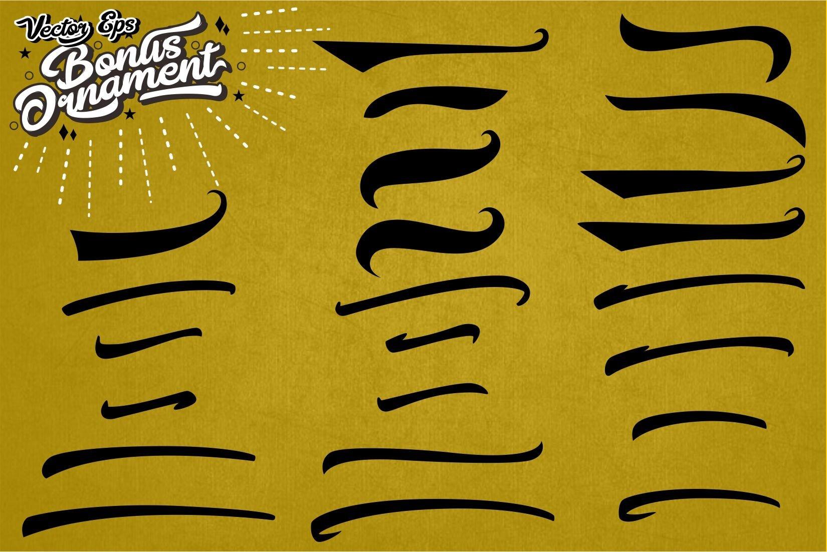 Epines Bold Brush Modern Script Bonus Swash example image 9