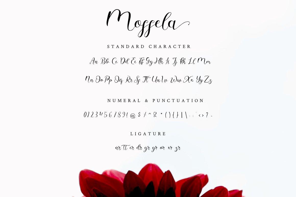 Mosella example image 10