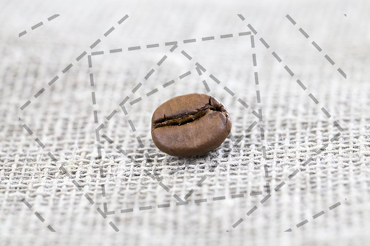 coffee grain example image 1