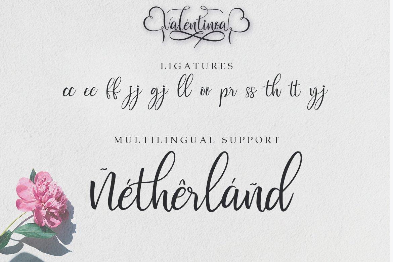 Valentinoa | A Romantic Calligraphy Font example image 9