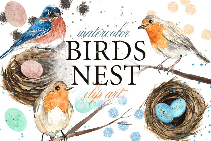 Birds Nest and Eggs Watercolor Clip Art Illustrations example image 1