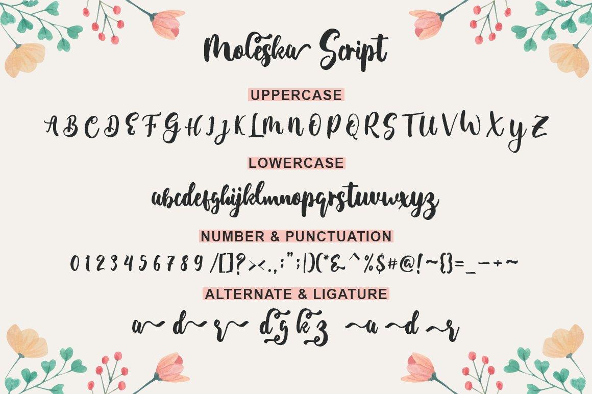 Moleska Script example image 8