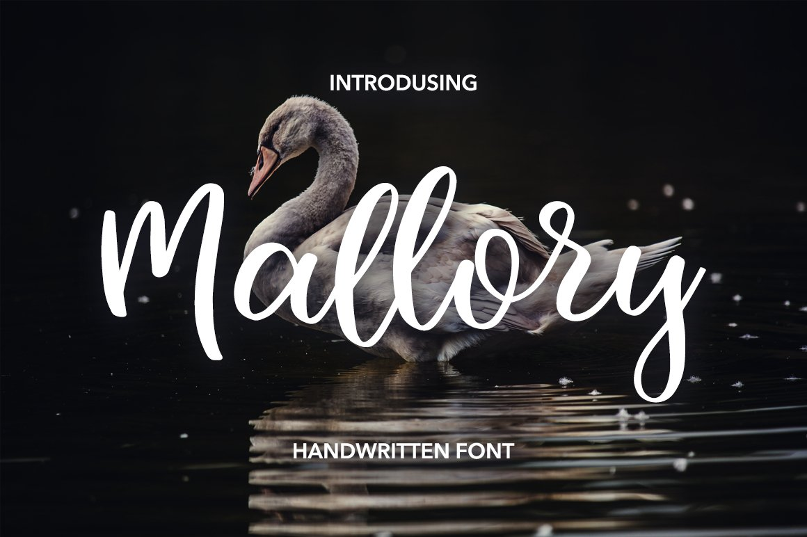 47 IN 1 FONT BUNDLE example image 4