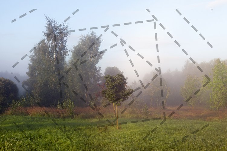 morning mist example image 1