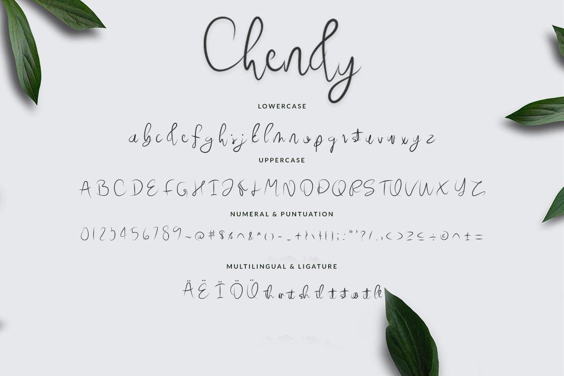 Chendy example image 6