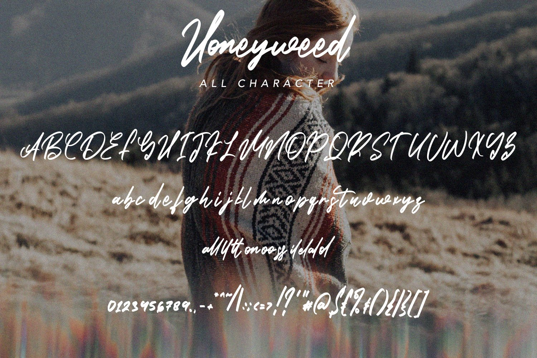Honeyweed - Script Typeface Font example image 4