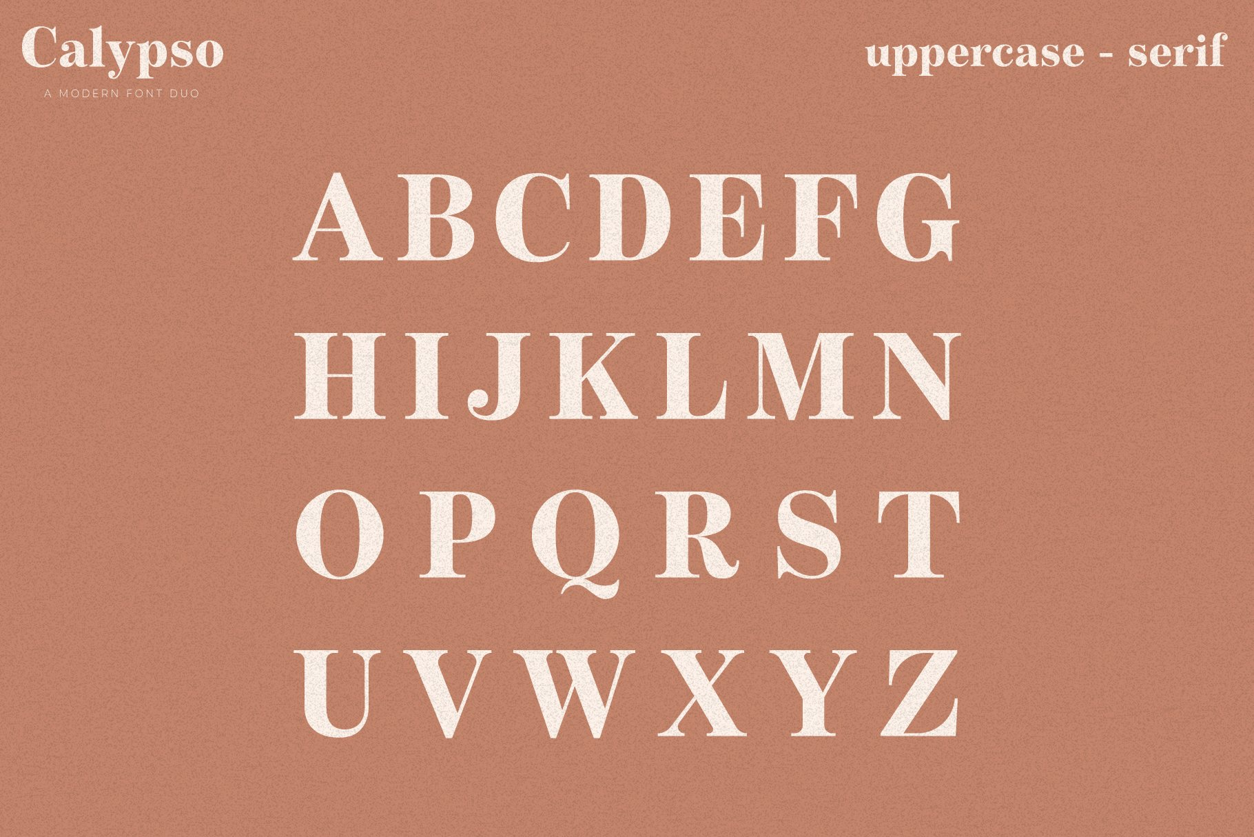 Calypso // A Modern Font Duo example image 14