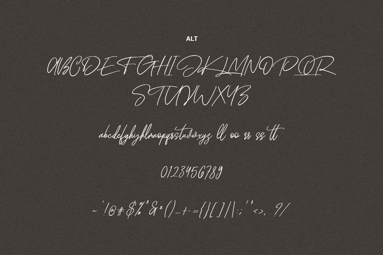 Wellfare - Handwritten Swash Font example image 8