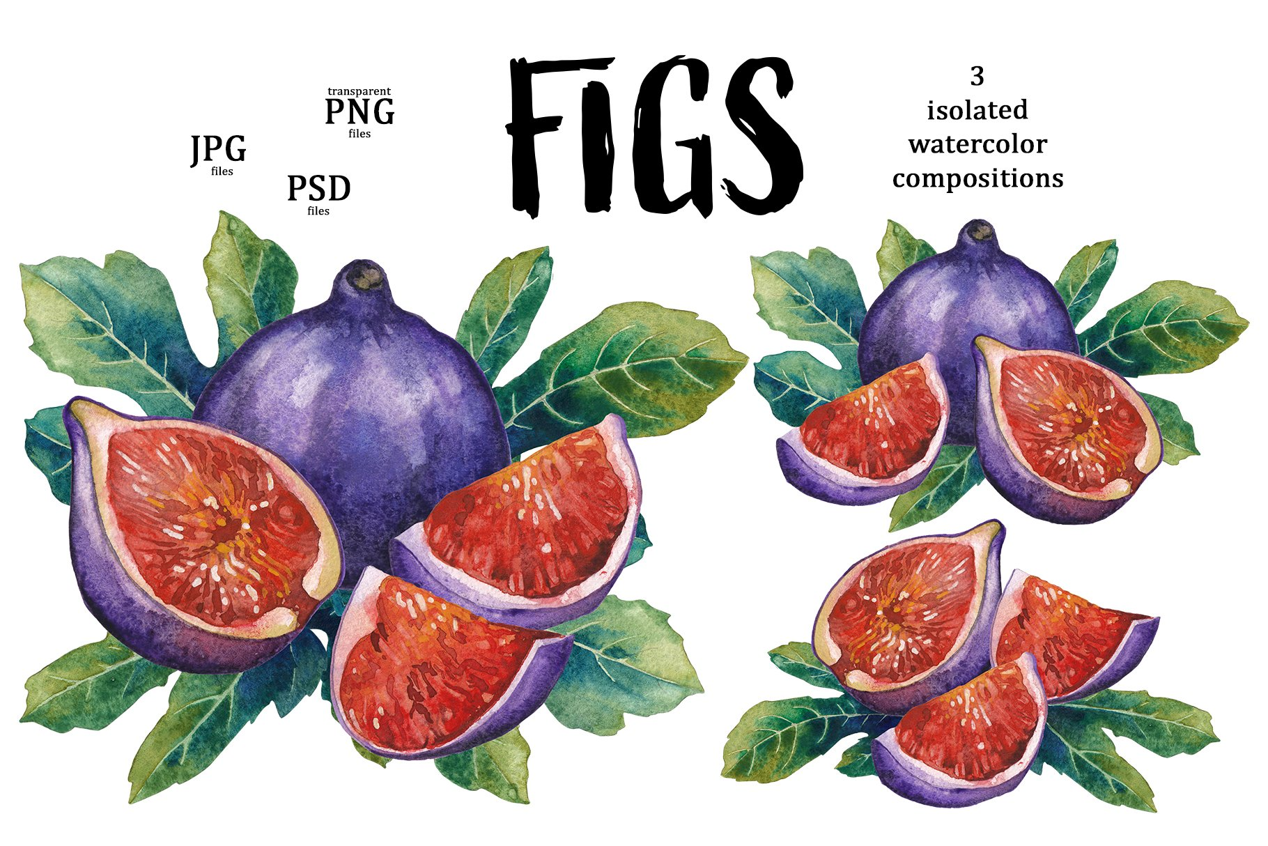 Figs example image 3