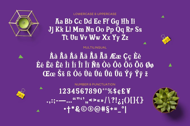 Higeas - Playful Display Font example image 3