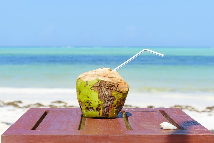 coconut example image 1