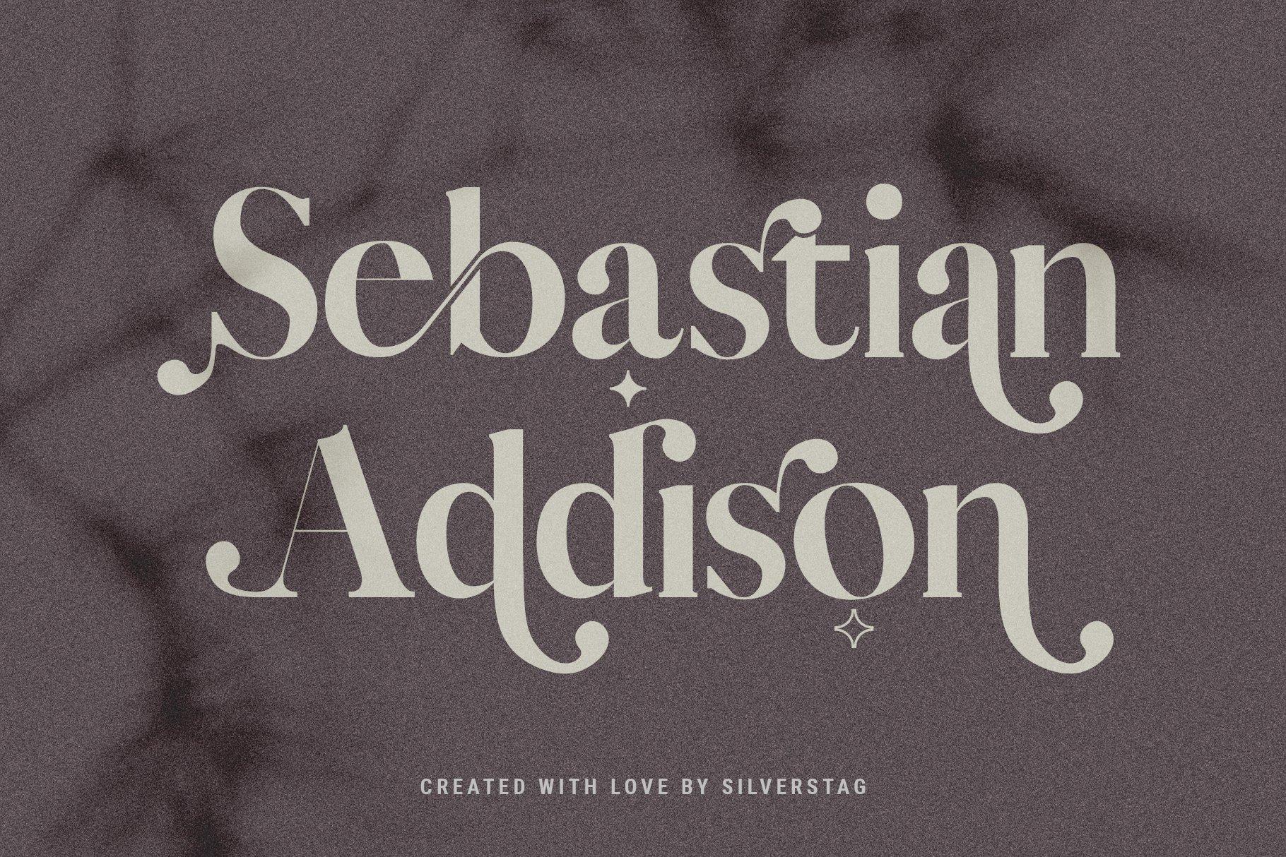 Vicky Christina - Chic & Stylish Ligature Serif Font example image 10