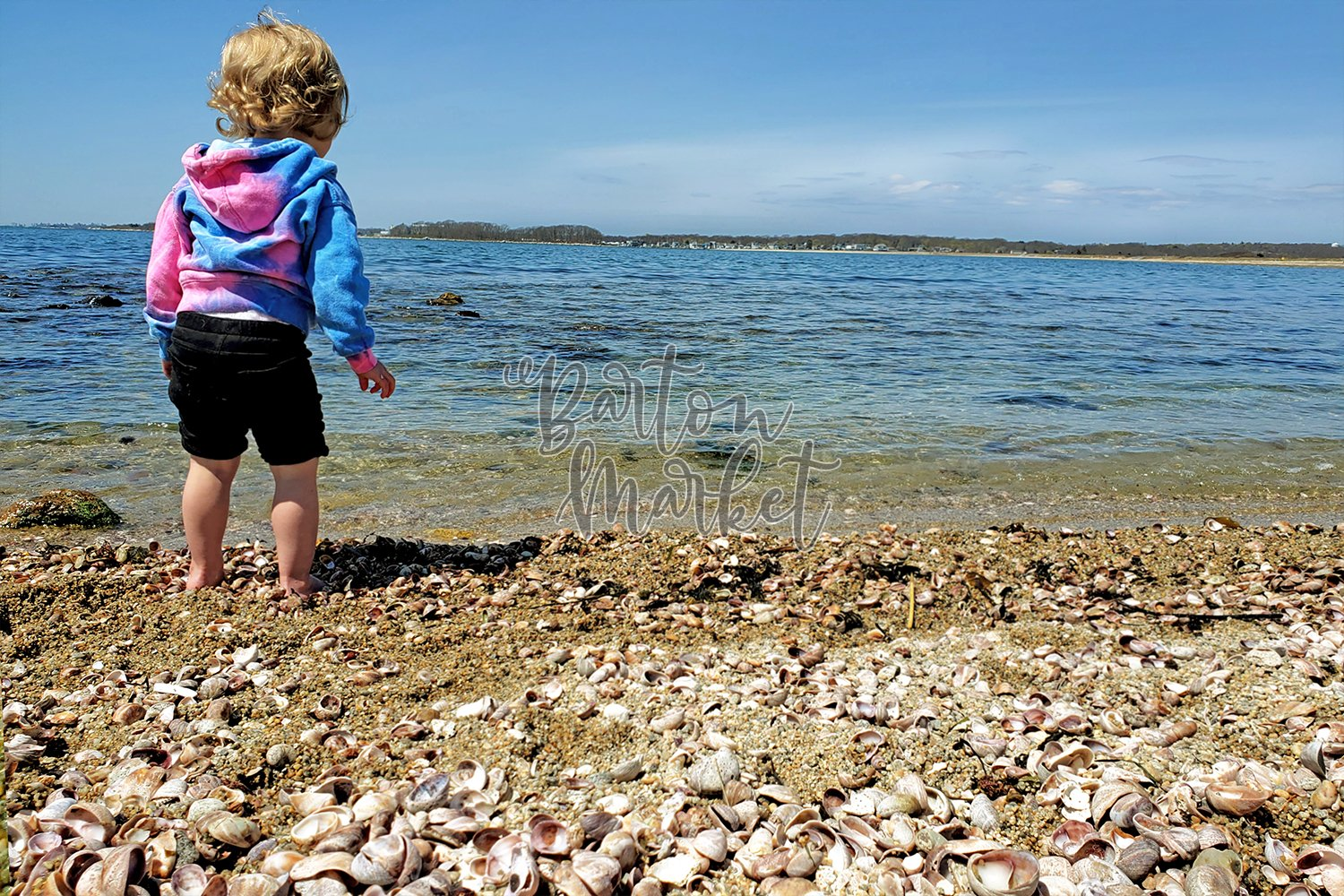 Stock Photo - Toddler on Beach example image 1