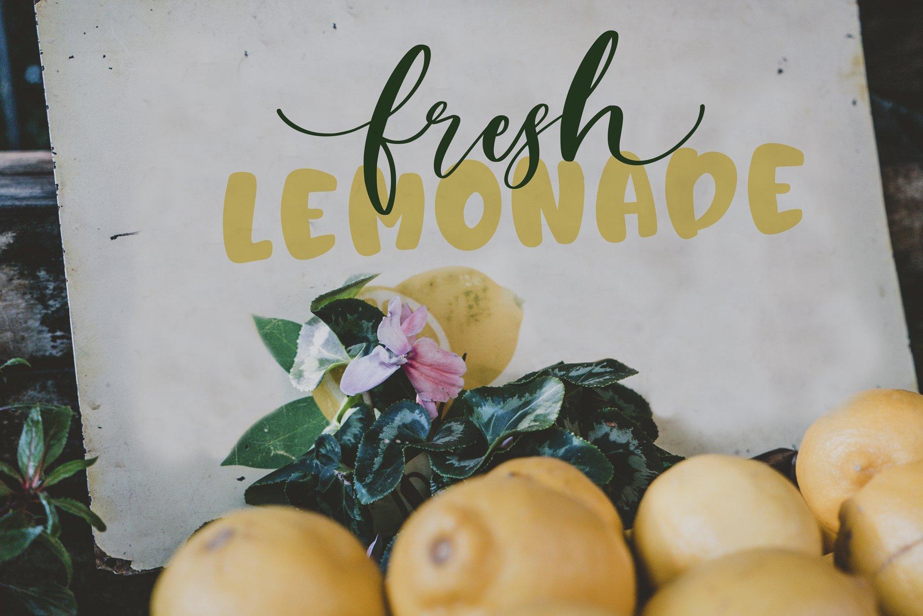 Berry Lemonade Font Duo example image 7