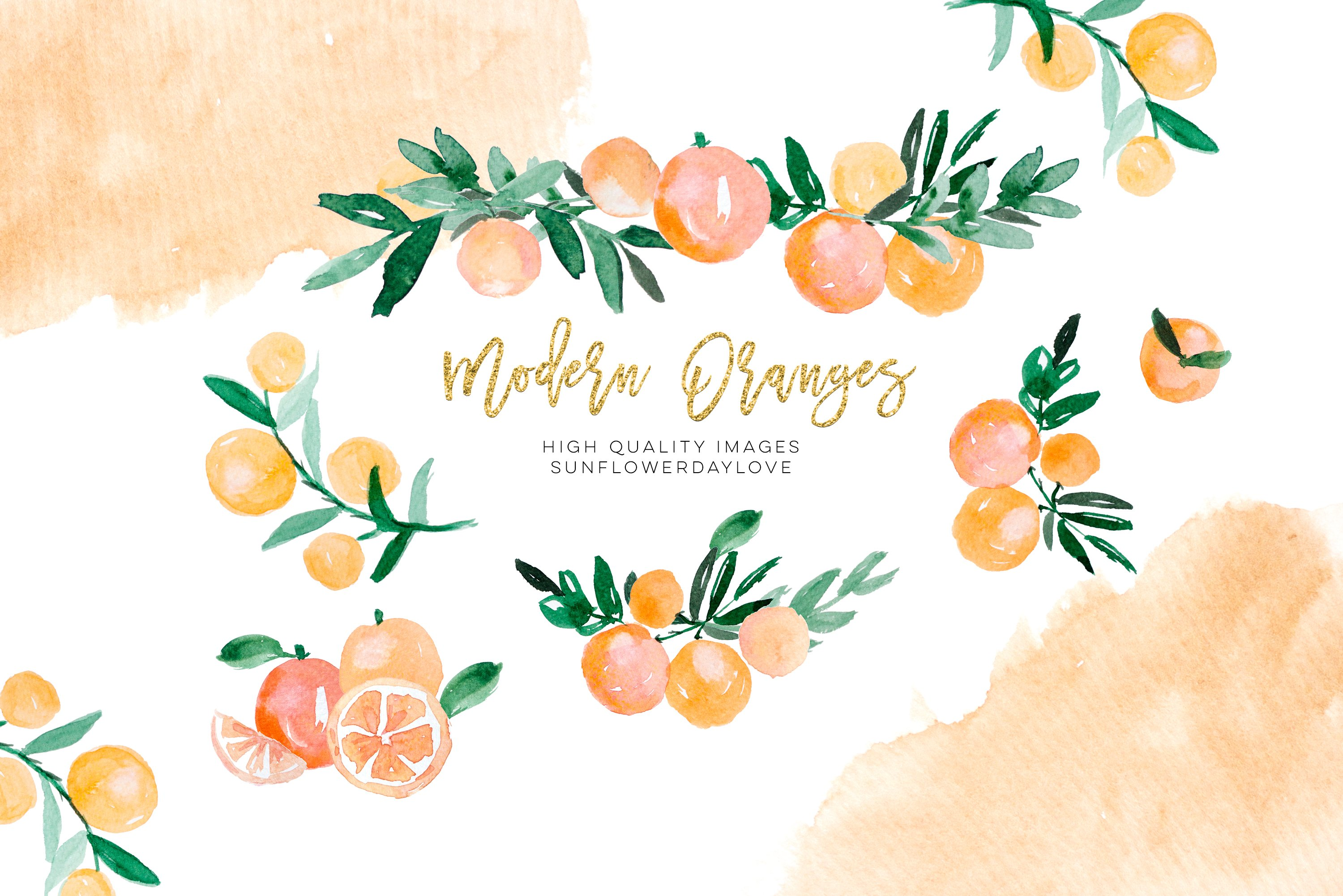 Orange Citrus Watercolor Clipart, Bitter Orange Wall Art example image 1