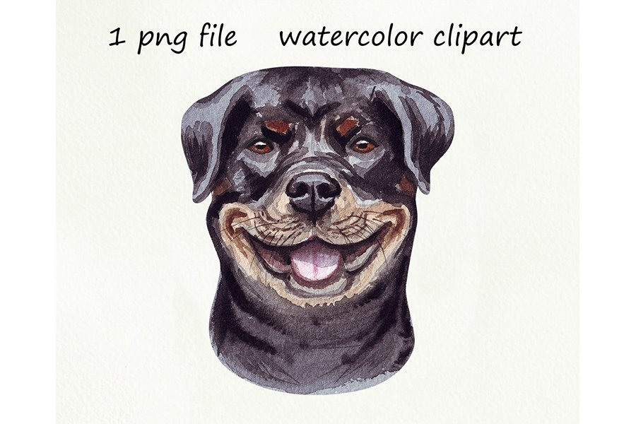 Watercolor dog png, Rottweiler dog, hand drawn example image 1