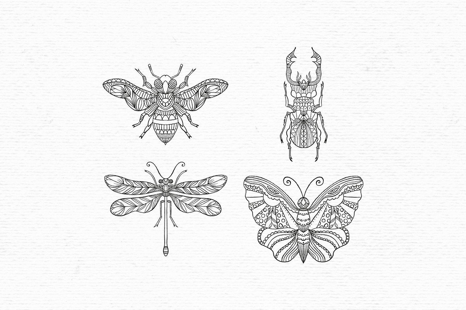 Hand drawn digital stamps with insects | Boho clipart example image 2