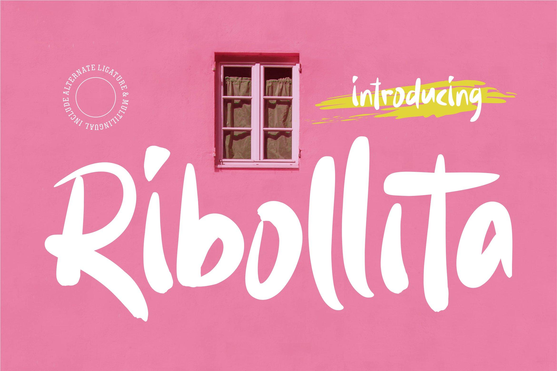Ribollita - Brush Font example image 1
