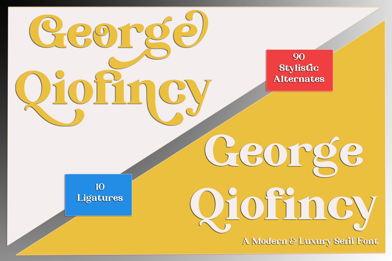 George Qiofincy example image 1