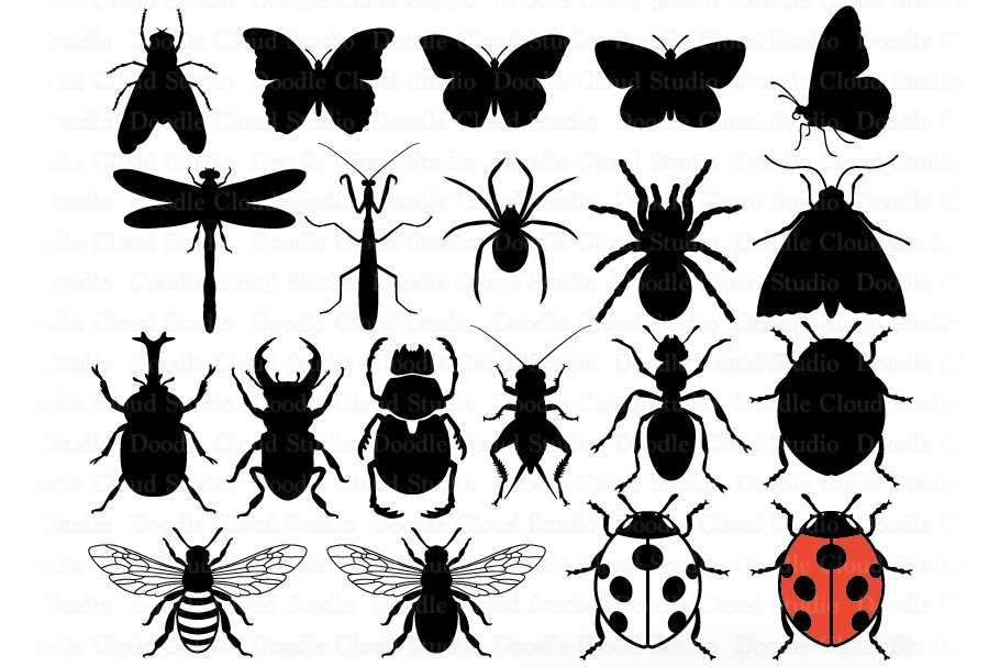 Insects Bundle SVG Cut Files, Insect Clipart, Bugs SVG. example image 7