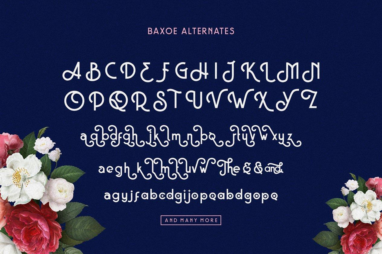 Baxoe | Elegant and Fancy Typeface example image 7