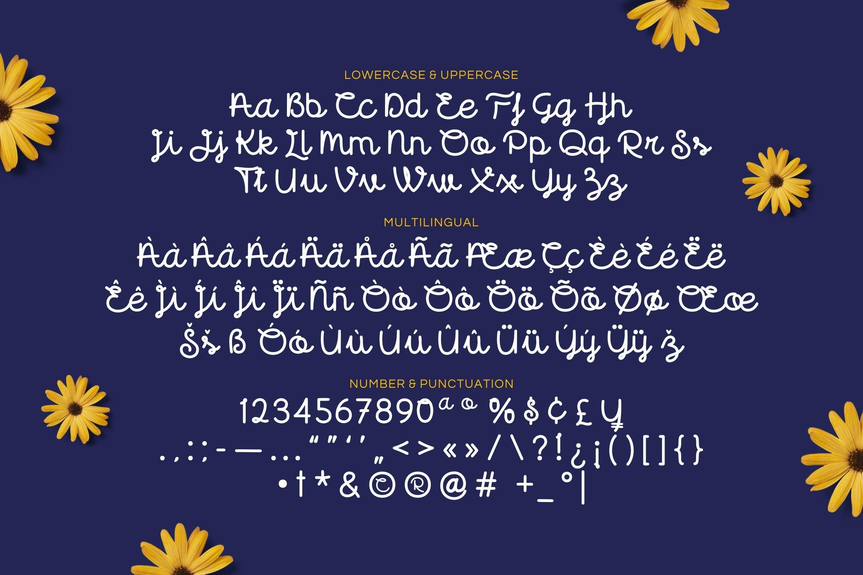 Florida - Cute Script Font example image 4
