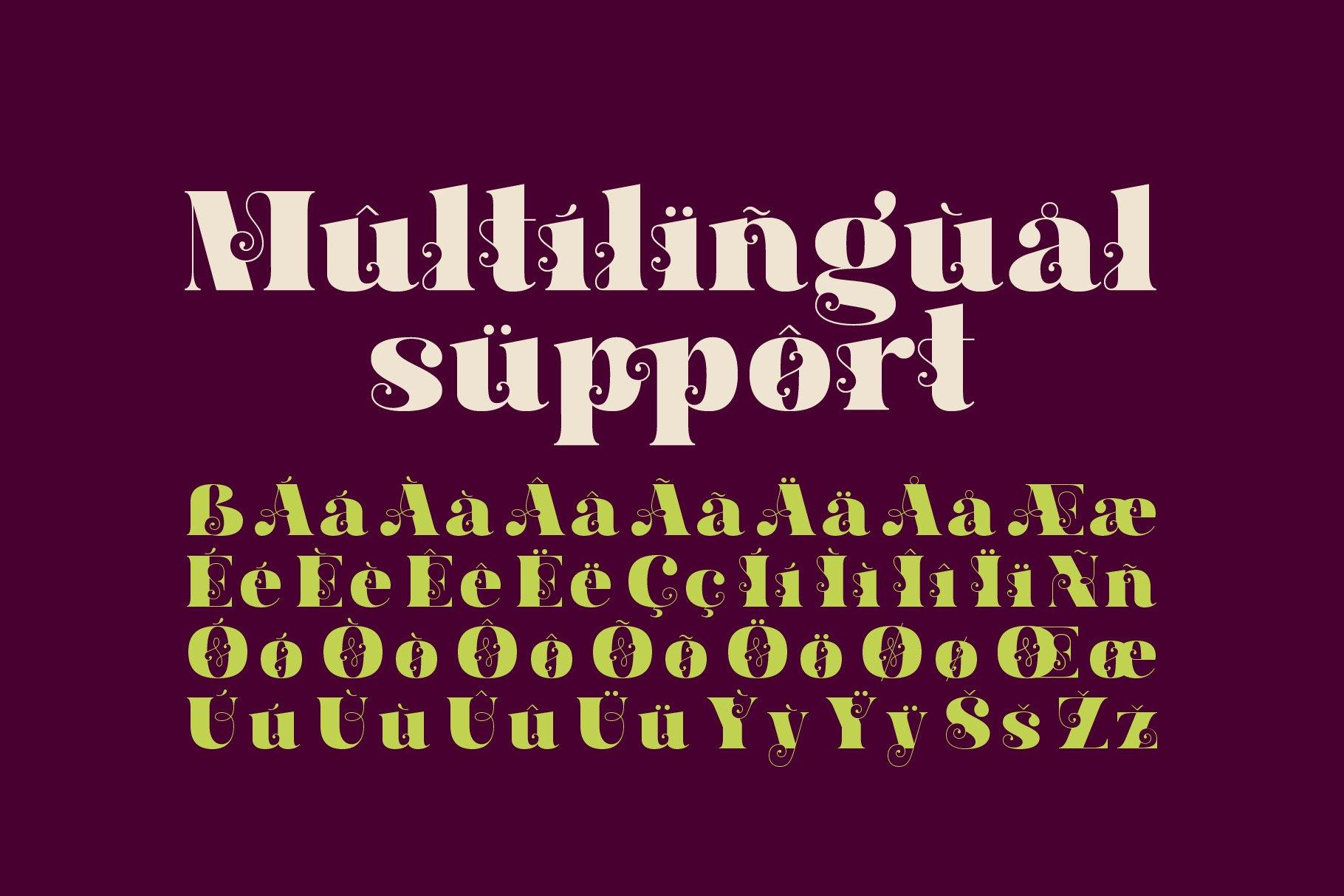 Hallie - Bold Classic Font example image 4