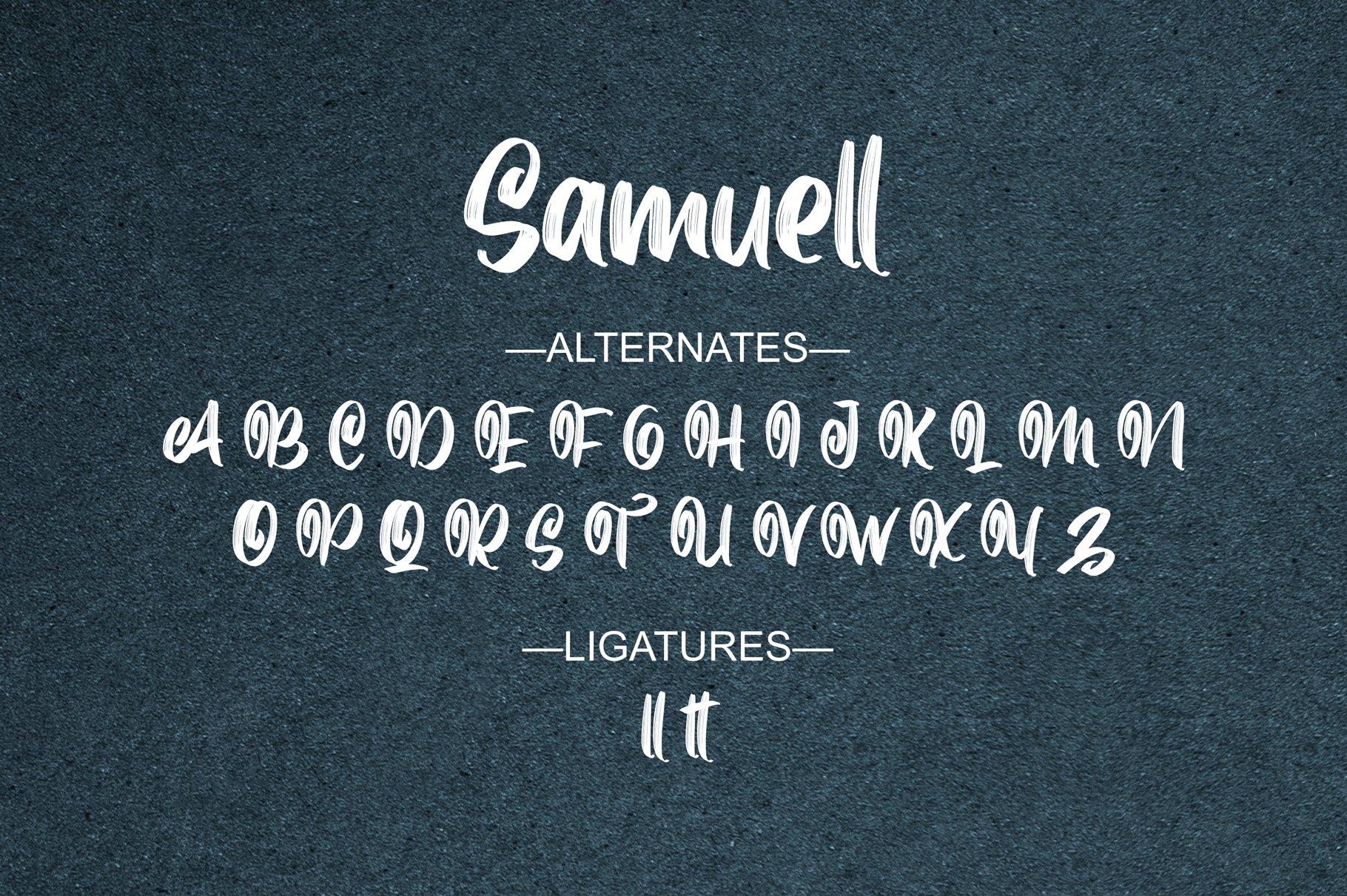 Samuell example image 12