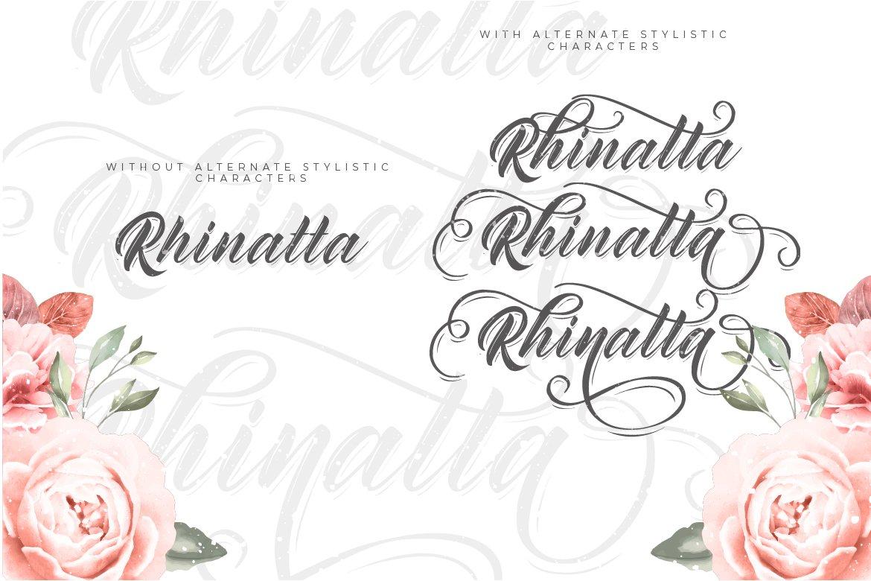 Rhinatta Script example image 5