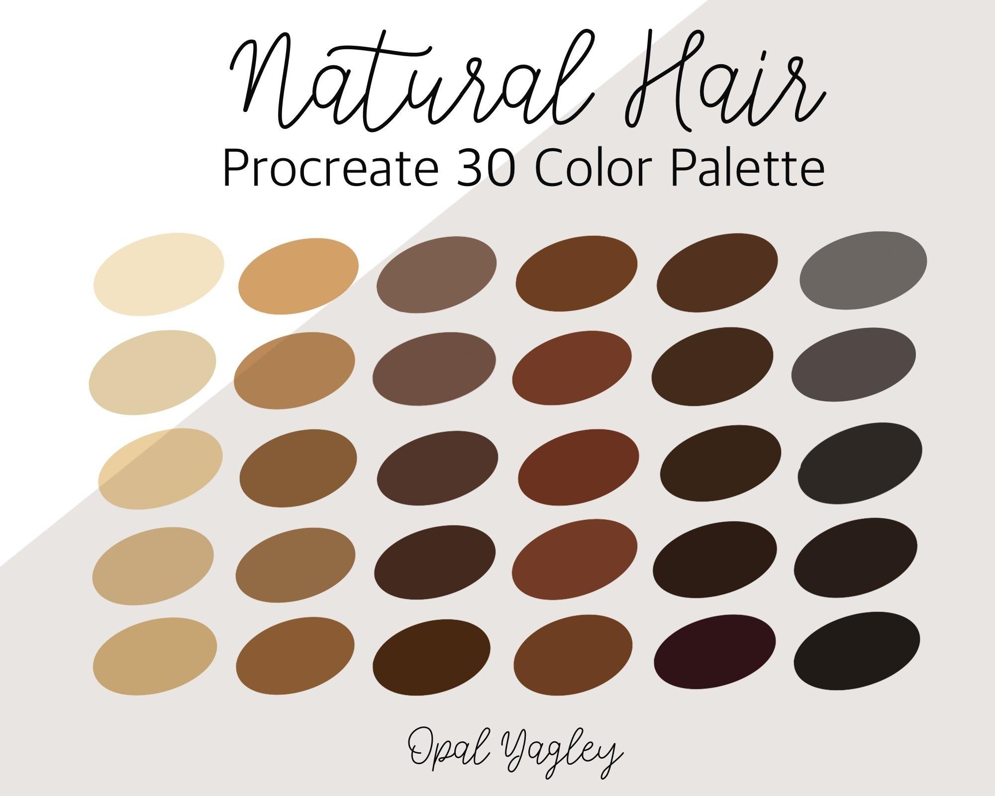 Natural Hair Procreate Color Palette 30 Colors 1110882 Procreate Design Bundles