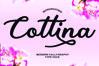 Cottina example image 1