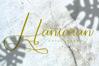 hantaran example image 1