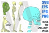 Skeleton Whole Body sideview - SVG-EPS-JPG-PNG example image 1