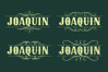 JOAQUIN example image 10