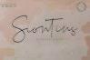 Siontins // elegant signature font example image 1