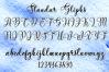 BIG BUNDLE FONT SCRIPT COLECTION example image 11