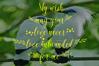 BIG BUNDLE FONT SCRIPT COLECTION example image 22