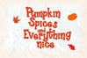 Pretty Pumpkin - Fun Serif Font with Frame example image 2