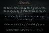 Vedastya Script Font example image 5