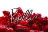 Rosella Script example image 1