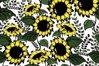 Sunflowers design elements example image 1