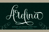 Arelina Script Font example image 8