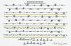 Elation Script example image 12