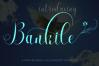 BIG BUNDLE FONT SCRIPT COLECTION example image 2