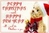 Adorable Christmas example image 9