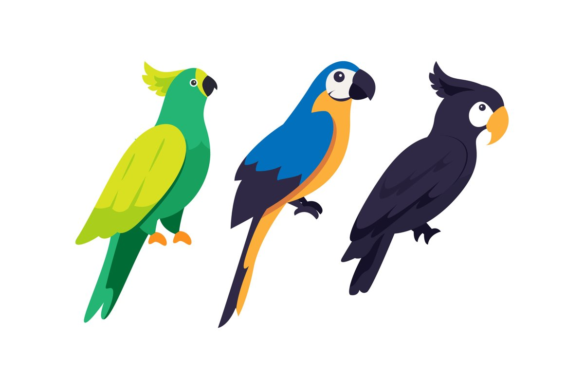 Parrot Illustrations example image 1
