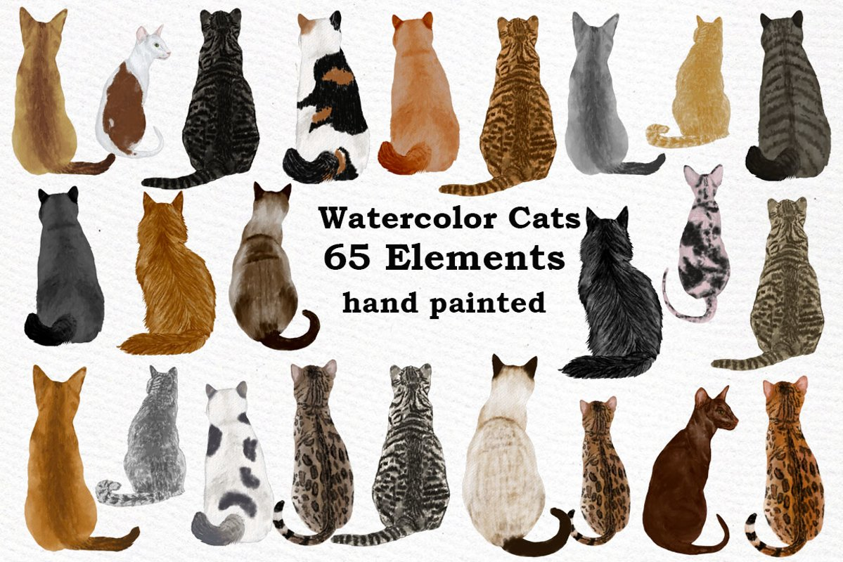 Cat Clipart, WATERCOLOR CATS, Cat breeds,Pet clipart, kitten example image 1
